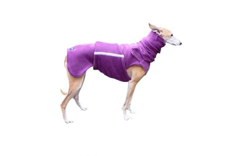 greyhound_coat_14r.jpg